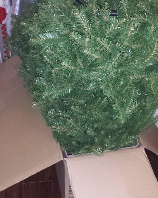 Christmas tree box